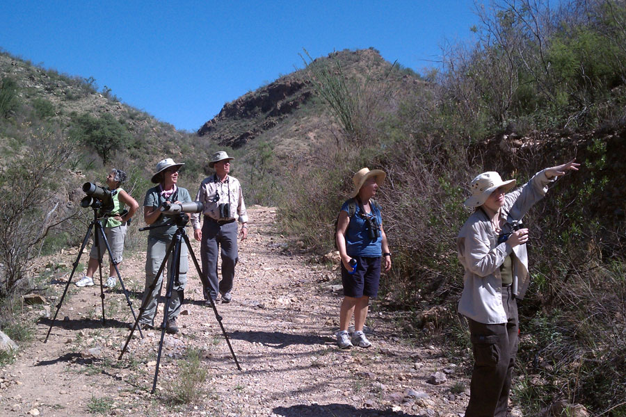 birders-at-California-Gulch-11-0814-02