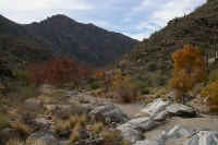 Sabino-Canyon