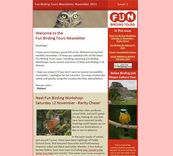 fun-birding-tours-newsletter